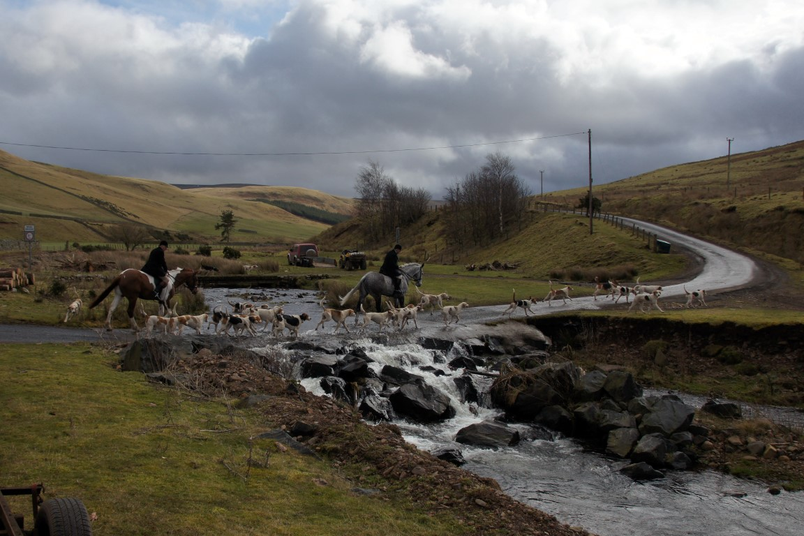 College Valley North Northumberland Hunt